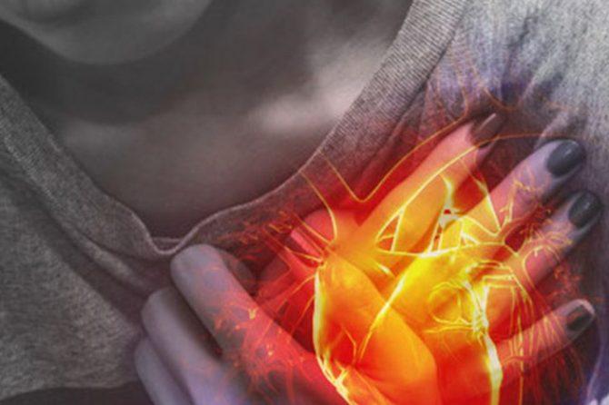Echocardiogram vs. EKG – Explained By a Cardiologist